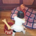 生後9ヶ月の赤ちゃんの生活サイクルと遊び場についてご紹介